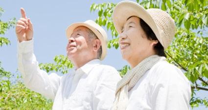 5 секретов японского долголетия