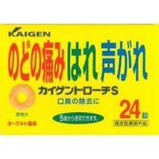 Kaigen Troche S Таблетки от боли в горле и стимулирования местного неспецифического иммунитета № 24