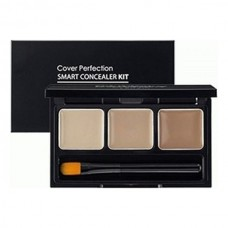 Палетка консилеров THE SAEM Cover Perfection Smart Concealer Kit 4,2гр